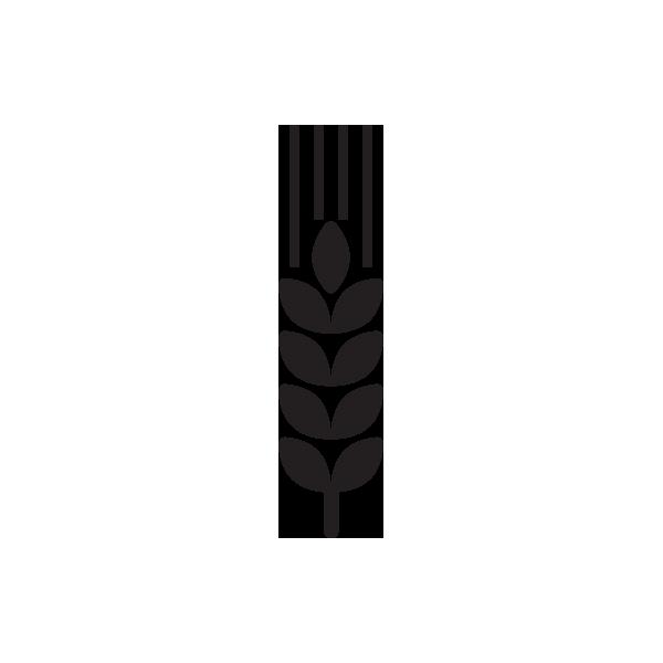 piwo browar wiatr pszenica ikona